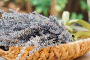 tosse secca rimedi naturali efficaci