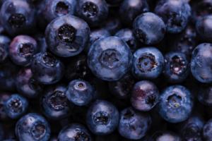 Mirtillo nero e zenzero, alimenti della salute