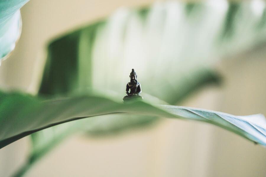 L'arte di vivere: la meditazione Vipassana